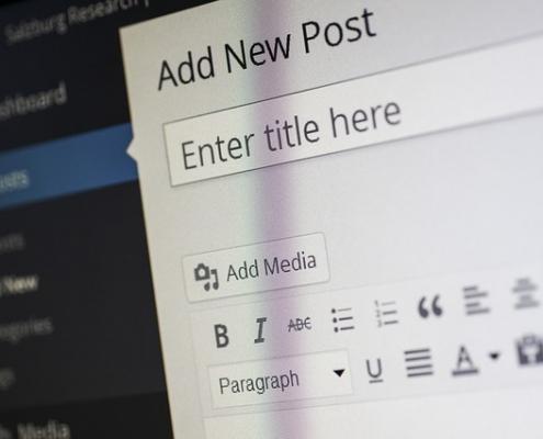 Ausschnitt eines WordPress Backends bei Anlage eines neuen Artikels